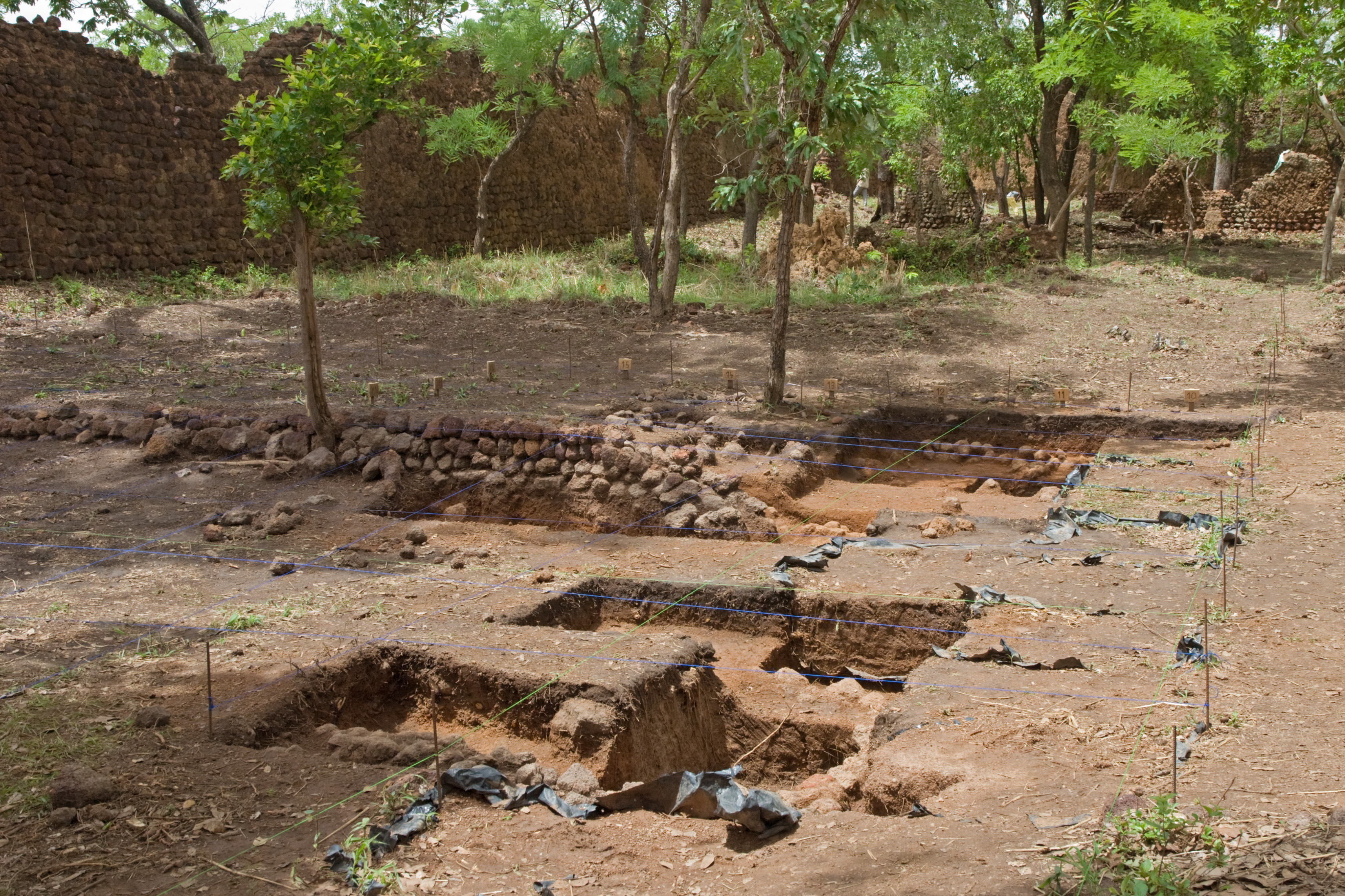 2016-05-441-134ap_archeologyexcavation_loropc3a9ni_ruins_nr-loropc3a9niponi_prv-bf_sun15may2016-1119h